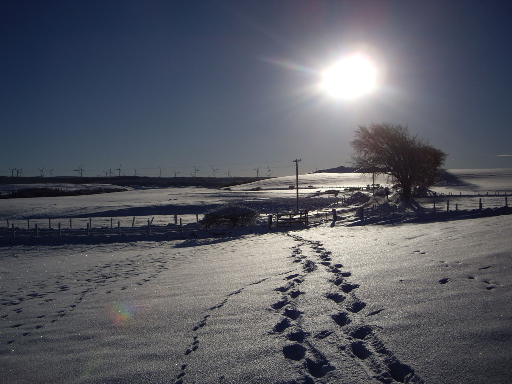 Snow-covered fields outside the village