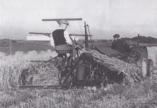 Kirkton Moor Farm, Eaglesham, 1950s